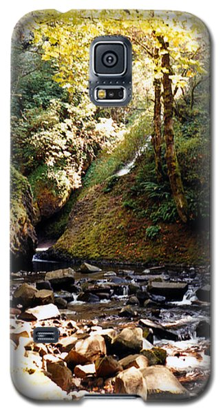 Galaxy S5 Case featuring the photograph Stream Bed Oregon by Maureen E Ritter