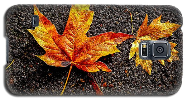Galaxy S5 Case featuring the photograph Street Leaf by Ken Stanback