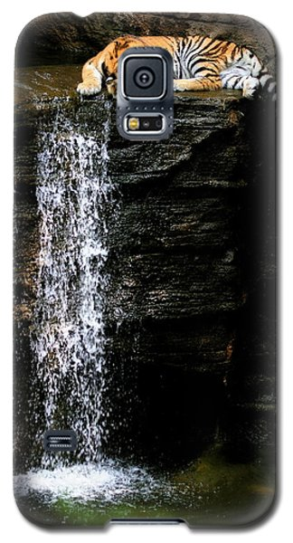 Strength At Rest Galaxy S5 Case