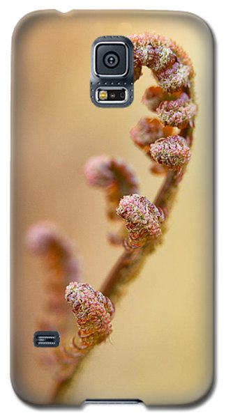 Stretch Galaxy S5 Case by Carrie Cranwill
