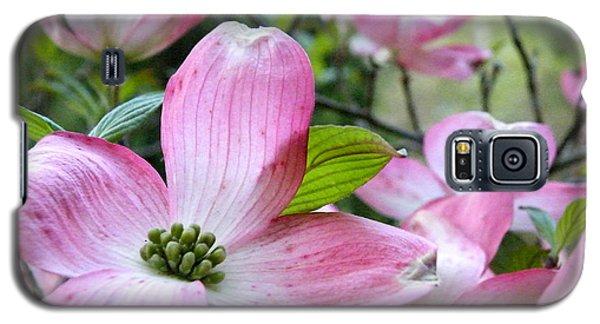 Subtle Magnolia Galaxy S5 Case