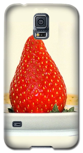 Succulent Strawberry Galaxy S5 Case