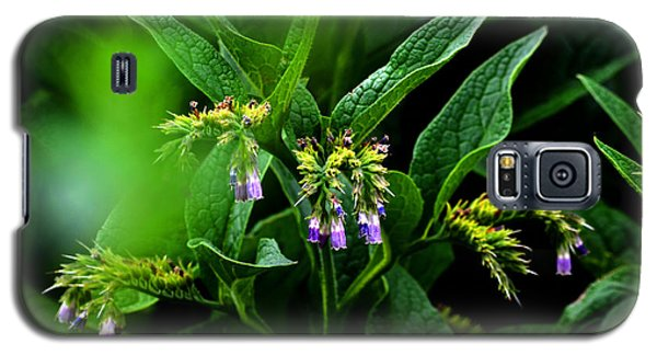 Galaxy S5 Case featuring the photograph Summer Comfrey Blooms by Susanne Still