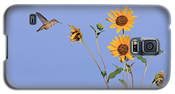 Summer Day Hummingbird Galaxy S5 Case