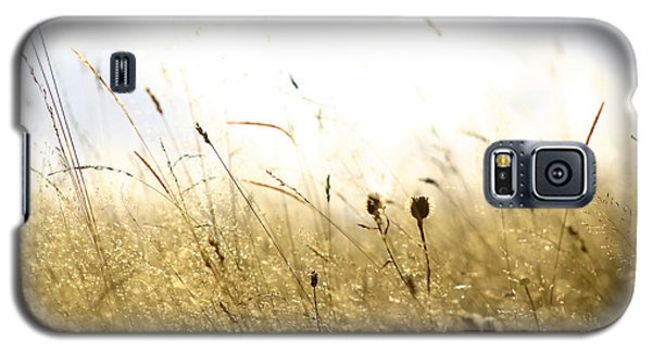 Galaxy S5 Case featuring the photograph Summer Field by Emanuel Tanjala