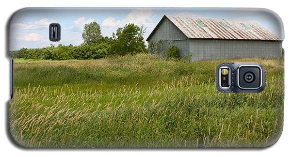 Summer Field Galaxy S5 Case by Robin Regan