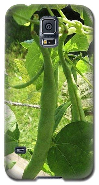 Summer Green Beans Galaxy S5 Case
