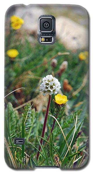 Summit Lake White Globe Galaxy S5 Case