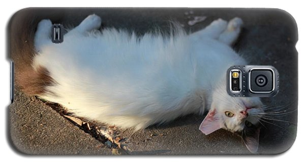 Galaxy S5 Case featuring the photograph Sun-bath by Rdr Creative