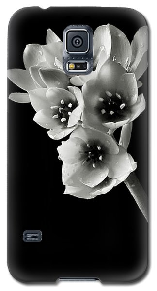 Galaxy S5 Case featuring the photograph Sun Star In Black And White by Endre Balogh