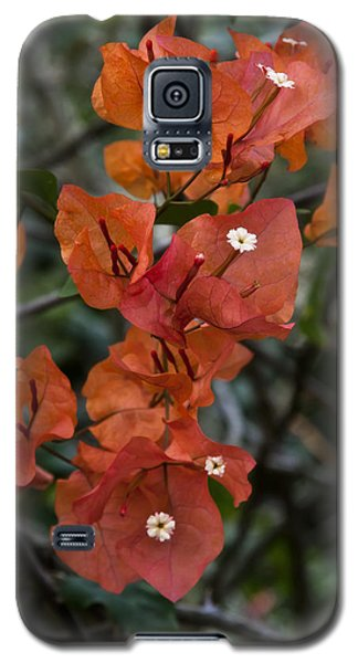 Galaxy S5 Case featuring the photograph Sundown Orange by Steven Sparks