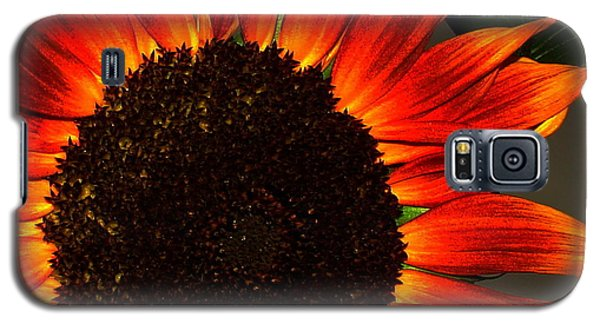 Galaxy S5 Case featuring the photograph Sunfire by Ramona Johnston