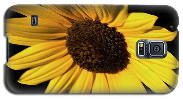 Sunflower At Dusk Galaxy S5 Case