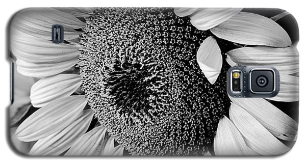 Galaxy S5 Case featuring the photograph Sunflower by Dan Wells