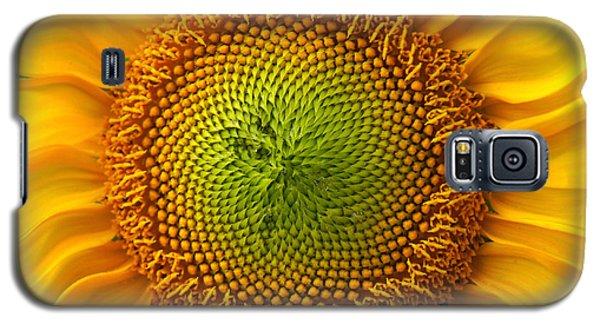 Sunflower Fantasy Galaxy S5 Case by Benanne Stiens