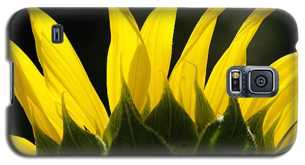 Sunflower Greeting The Morning Galaxy S5 Case