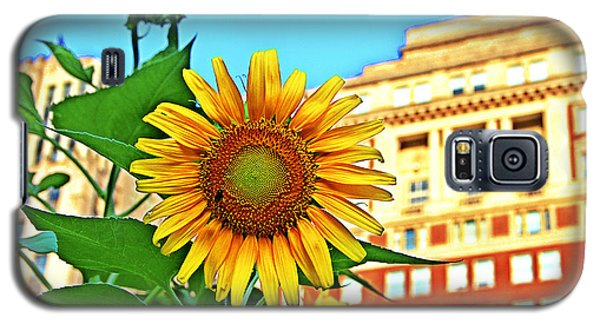Galaxy S5 Case featuring the photograph Sunflower In The City by Alice Gipson