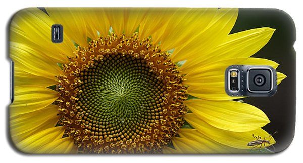 Sunflower With Insect Galaxy S5 Case by Daniel Reed