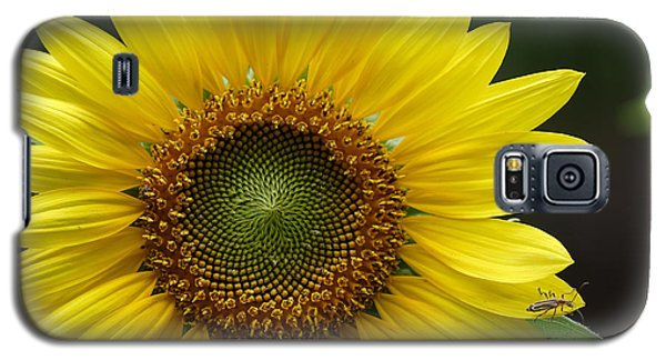 Sunflower With Insect Galaxy S5 Case
