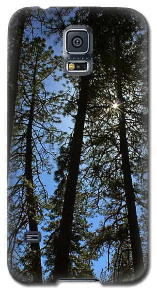 Galaxy S5 Case featuring the photograph Sunlight Through The Pines by Tyra  OBryant