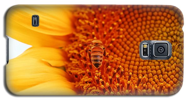 Galaxy S5 Case featuring the photograph Sunny Day by Laurianna Taylor