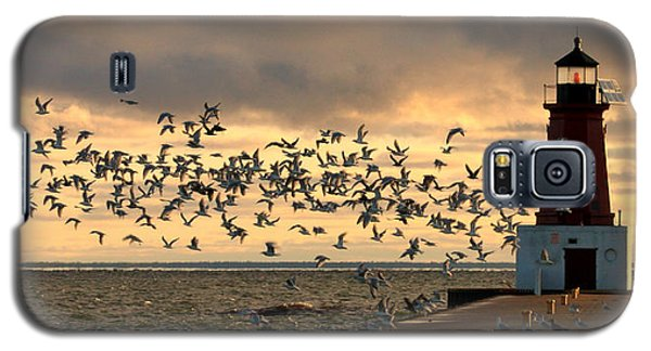 Sunrise Seagulls 219 Galaxy S5 Case