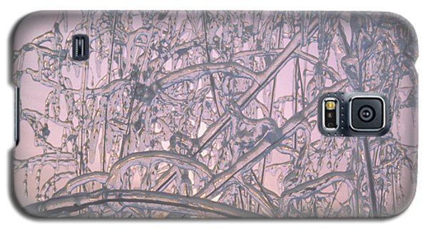 Galaxy S5 Case featuring the photograph Sunrise Through Ice Covered Shrub by Tom Wurl