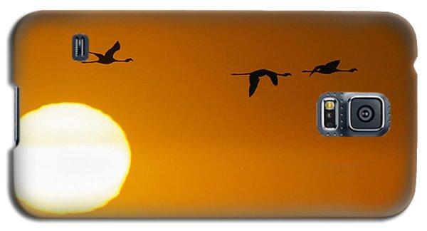 Sunset 3 Galaxy S5 Case