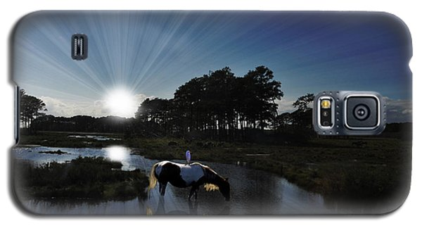 Sunset Assateague Island With Wild Horse Galaxy S5 Case