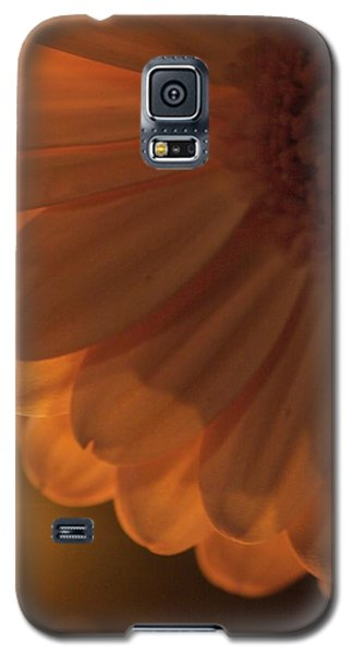 Sunset Flower Galaxy S5 Case by JM Photography