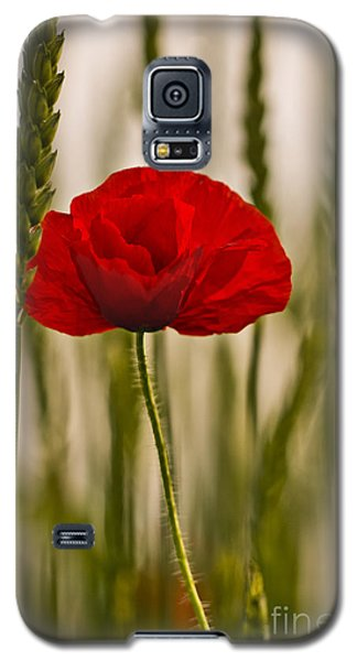 Galaxy S5 Case featuring the photograph Sunset Glow. by Clare Bambers