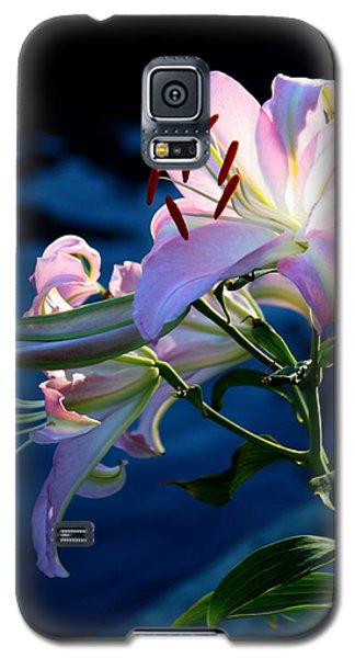 Sunset Lily Galaxy S5 Case by Patrick Witz