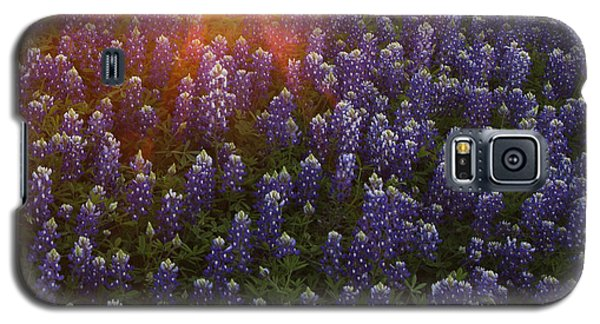 Sunset Over Bluebonnets Galaxy S5 Case