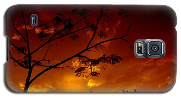 Sunset Over Florida Galaxy S5 Case