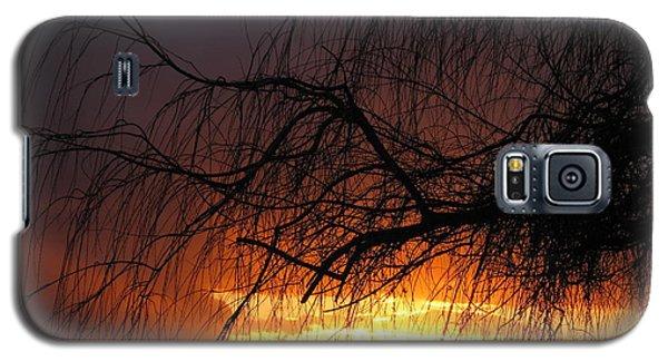 Sunset Galaxy S5 Case