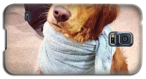 Superhero Galaxy S5 Case - Super Dog by Kelly Diamond