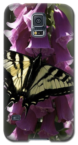 Galaxy S5 Case featuring the photograph Swallowtail And Foxglove by Betty Depee