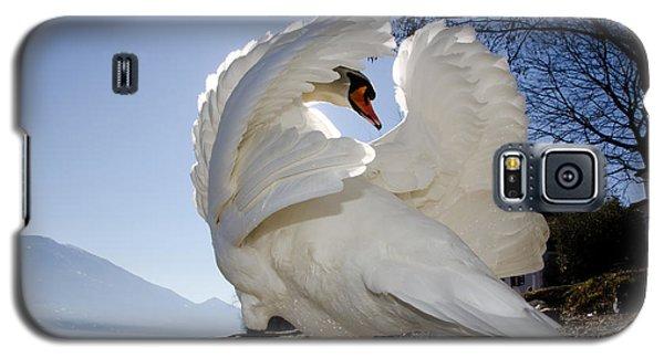 Swan In Backlight Galaxy S5 Case