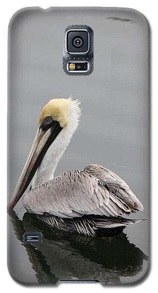 Swan Of The Gulf Coast Galaxy S5 Case by Deborah Hughes