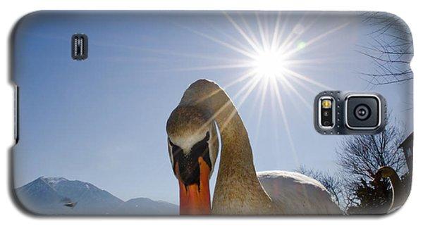 Swan Saying Hello Galaxy S5 Case
