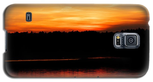 Swans In The Sunset Galaxy S5 Case