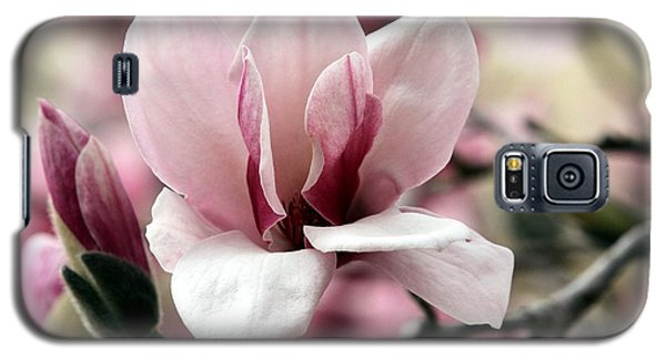 Galaxy S5 Case featuring the photograph Sweet Magnolia by Elizabeth Winter