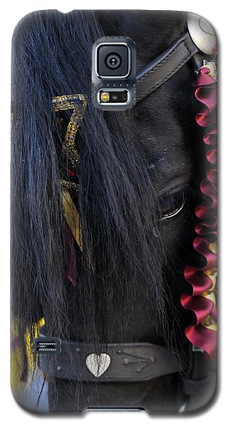 sweetheart - a Menorca race horse with traditional multicolor ribbons and mirror star Galaxy S5 Case by Pedro Cardona