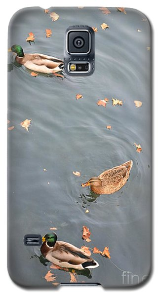 Galaxy S5 Case featuring the photograph Swimming Ducks And Autumn Leaves by Kathleen Pio