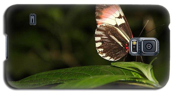 Take A Pose Galaxy S5 Case