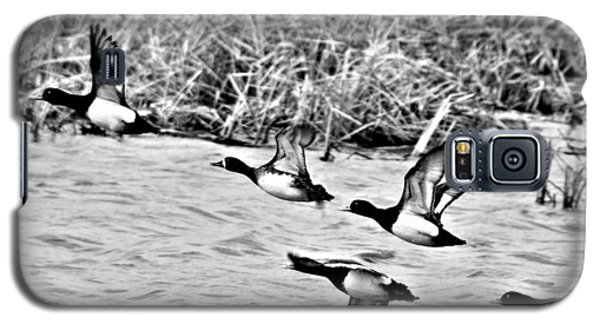 Galaxy S5 Case featuring the photograph Take Flight No. 2 In Black And White by Janice Adomeit