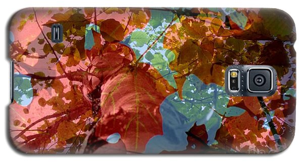 Tapestry Of Autumn 2 Galaxy S5 Case by France Laliberte