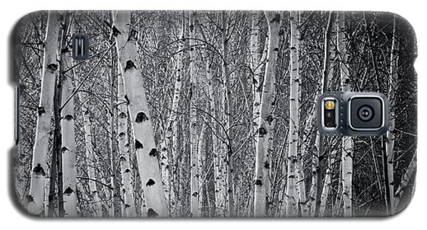 Tate Modern Trees Galaxy S5 Case