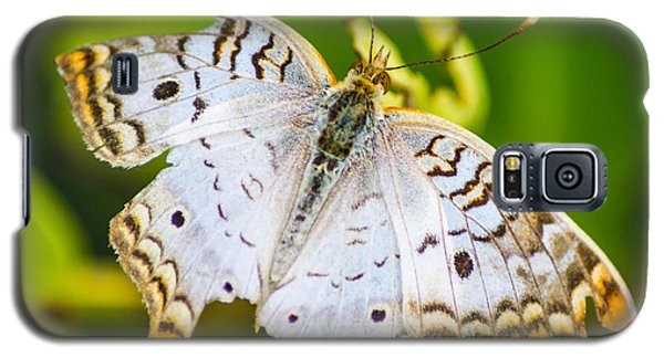 Galaxy S5 Case featuring the photograph Tattered Moth by Shannon Harrington