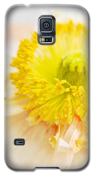 Tender Poppy Galaxy S5 Case